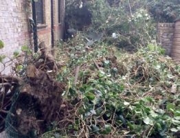 garden-waste-removal-london